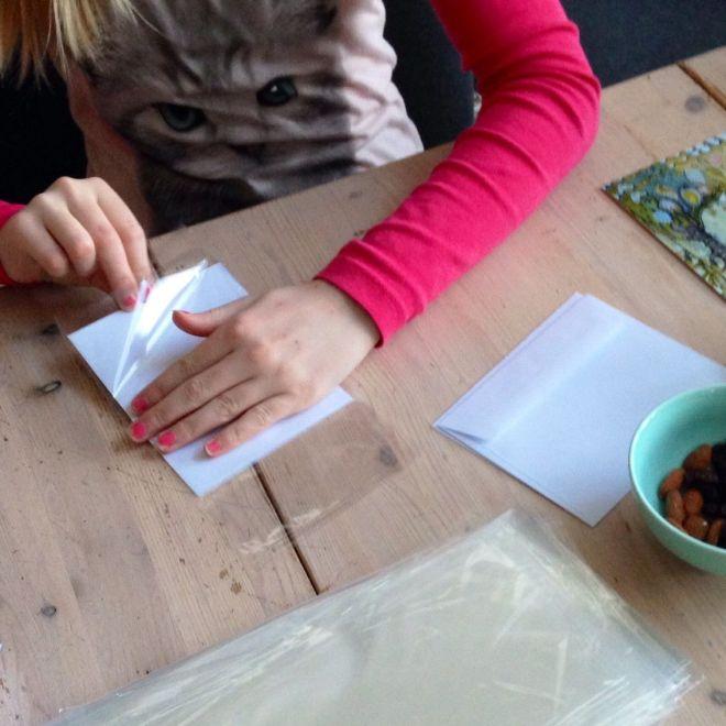 Celeste pakker kort
